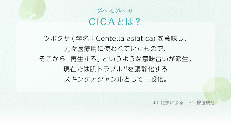 CICAの由来